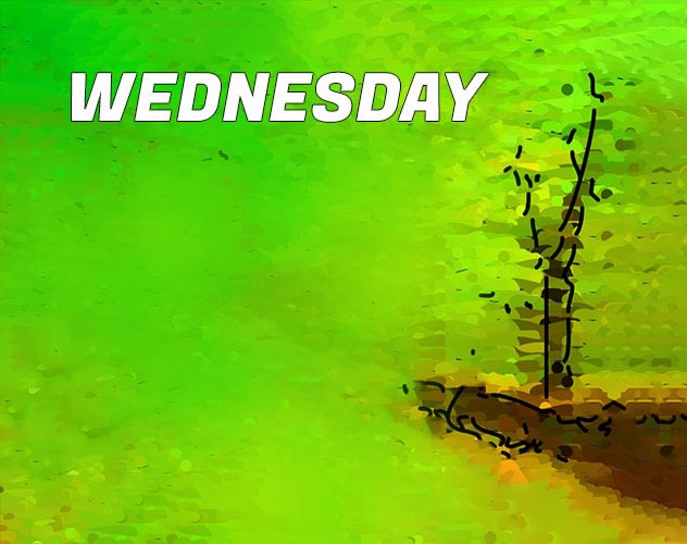 title: WEDNESDAY. Impressionistic painting of tree behind wall.